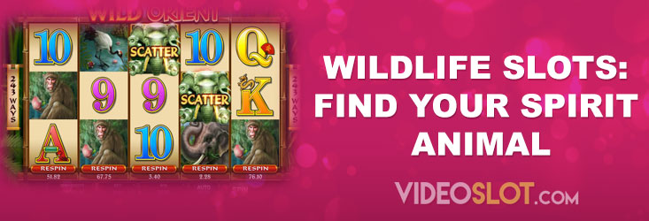 Wildlife Slots: Find Your Spirit Animal