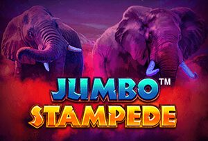 Jumbo Stampede slot review
