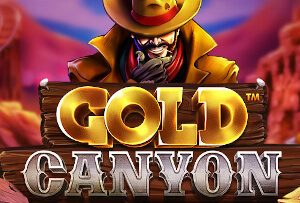 Go looking for gold and you can end up with your pocket full in the new Gold Canyon slot