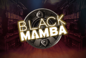 It's time to rock'n'roll with Play'n GO's latest Black Mamba game.